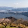 三方五湖の春