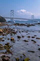 千鳥ヶ浜から見える鳴門大橋(鳴門市観光より)