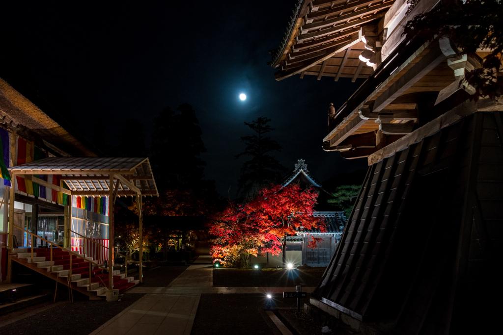 幽かな月の夜に