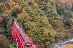 秋の峡谷トロッコ