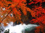 渓谷の彩り