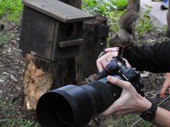 人気のカメラ