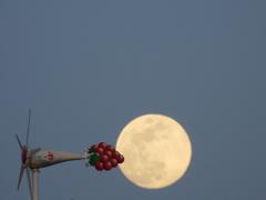 月に向かって