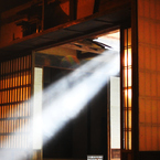 NIKON COOLPIX P900で撮影した(神の導き)の写真(画像)