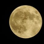 NIKON COOLPIX P900で撮影した(スーパームーン 月モード)の写真(画像)