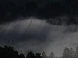 霞の中の背比べ