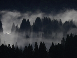 朝靄が晴れるとき