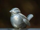 メドゥーサに出会った雀