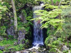 兼六園の滝