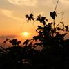 冷水岳にて 夕日