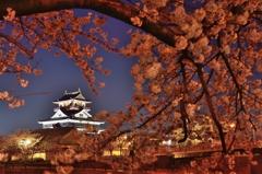 清洲城と夜桜