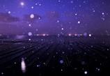 雪降る牡蠣棚に射す月光