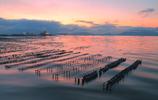 朝焼けと波紋の牡蠣棚