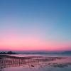 牡蠣棚の朝