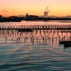 流れる波紋に輝く牡蠣棚