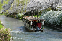 ~春の十石舟~