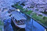 京都 十石舟