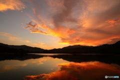 とある池で見た夕焼け