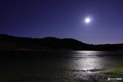 月明かりに照らされる水のない池