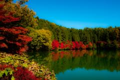 秋色の伊奈ヶ湖