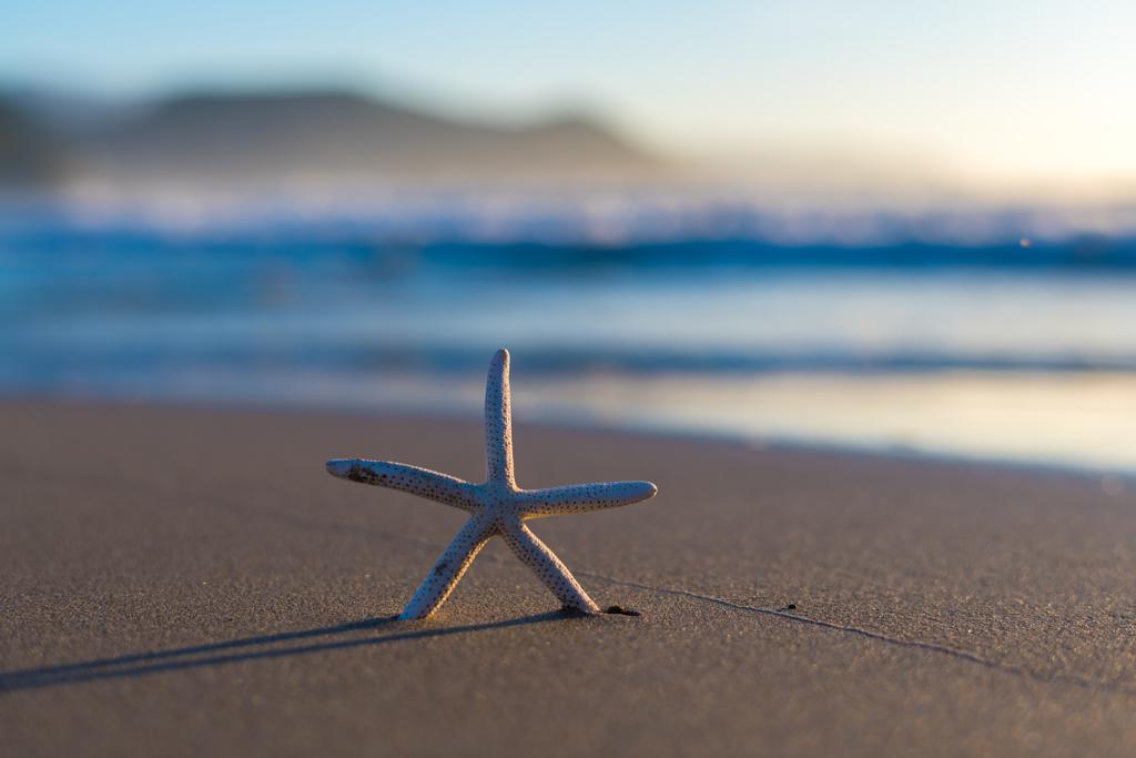 on the beach 〜 渚にて