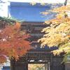 華厳寺の秋 Ⅱ