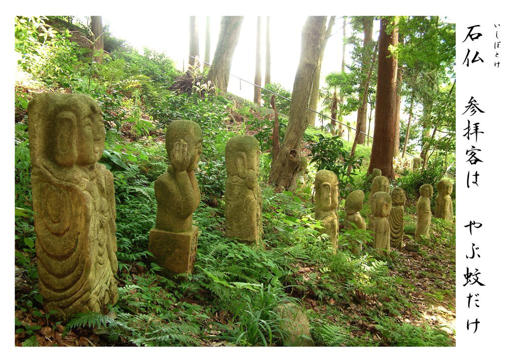 毎日こんな静かで、ここの和尚は食ってゆけるのかと心配する石仏たち・・♪