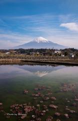 街で見つけた逆さ富士