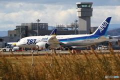 仙台空港に787
