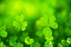 Green!!