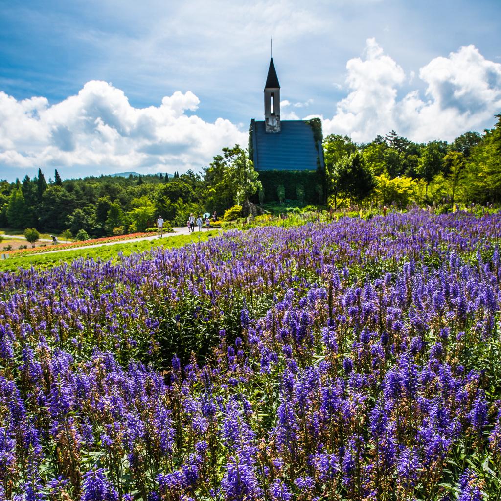 夏色の教会