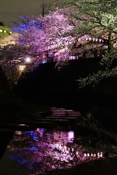 春宵の彩り