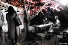桜の樹の下で 3