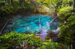 神の子が宿る池