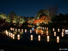 白鳥庭園 名古屋 - 2