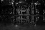 雨が残した鏡の世界