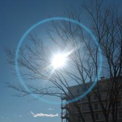 冬の太陽。