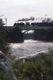 鬼怒川を渡る、SL大樹。