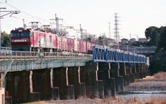 東北本線を上る高速貨物列車。