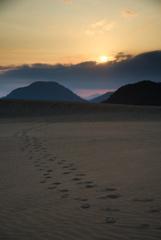 朝日射す砂丘