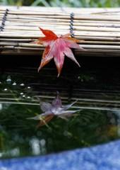 水面に映る紅葉 2