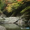 みたらい溪谷の秋