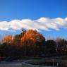 OLYMPUS E-PM1で撮影した(P1012082)の写真(画像)
