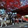 京師走の情景