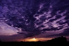 紫雲棚引く