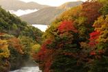 中禅寺湖、竜頭の滝より