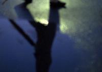 OLYMPUS E-M5で撮影した(雨が上がったのは夜)の写真(画像)