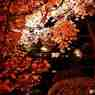 逍遙園の紅葉その3