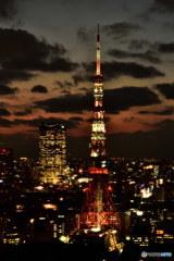 ライトアップされたばかりの東京タワー DSC_5320