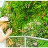 花好きの楽園